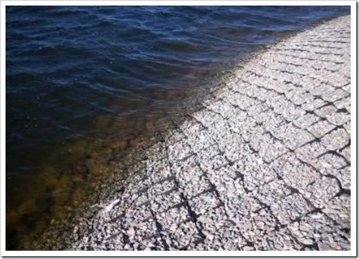 Методики сохранения берега от обрушения