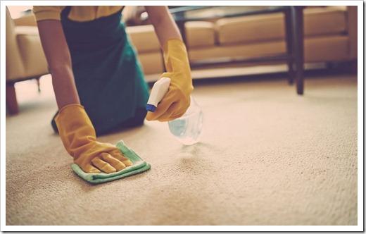 Регулярная сухая чистка – залог успеха