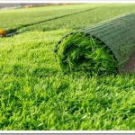 Почему искусственный газон лучше натурального?