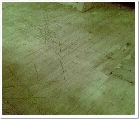 Шлифовка и циклевка деревянного пола