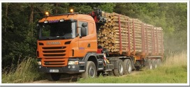 Как осуществляется автомобильные грузоперевозки леса