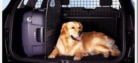 В чем можно перевозить собаку в машине